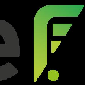 Logo du équipe Code F. Team!