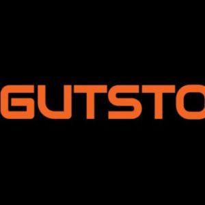 Logo du équipe GUTSTOK-3