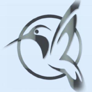 Logo du équipe PSE_Project